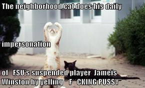 """The neighborhood cat does his daily impersonation  of   FSU's suspended player  Jameis Winston by yelling """" F**CKING pu**y"""""""