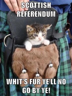 SCOTTISH REFERENDUM  WHIT'S FUR YE'LL NO GO BY YE!