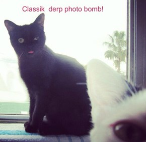 Classik  derp photo bomb!