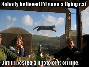 Nobody believed I'd seen a flying cat  Until I posted a photo of it on line.