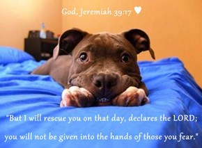 "God, Jeremiah 39:17 ♥  ""But I will rescue you on that day, declares the LORD; you will not be given into the hands of those you fear."""