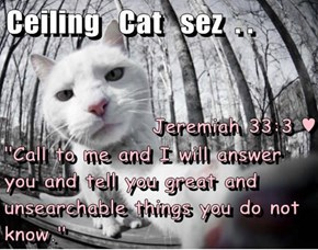 "Jeremiah 33:3 ♥ ""Call to me and I will answer you and tell you great and unsearchable things you do not know."""
