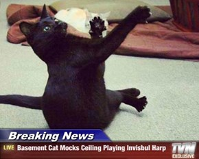 Breaking News - Basement Cat Mocks Ceiling Playing Invisbul Harp