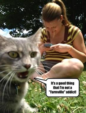 Too much Farmville!