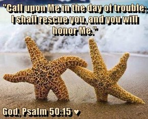 """Call upon Me in the day of trouble; I shall rescue you, and you will honor Me.""  God, Psalm 50:15 ♥"