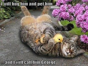 I will hug him and pet him  ... and I will call him George