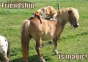 Friendship   is magic!