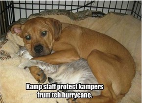 Kamp rides out the storm