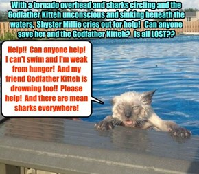 Madame Esmeralda's dire prediction several days ago has proven all too accurate!!  Can Millie be saved?  Can Godfather Kitteh be saved?  Is there no one to help??