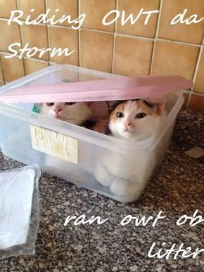 Riding  OWT  da  Storm  ran  owt  ob  litter