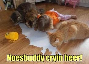 Noesbuddy cryin heer!