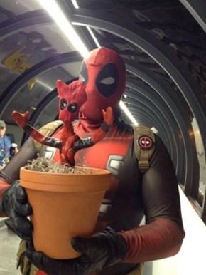 Deadpool Groot