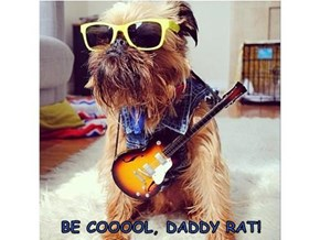 BE COOOOL, DADDY RAT!