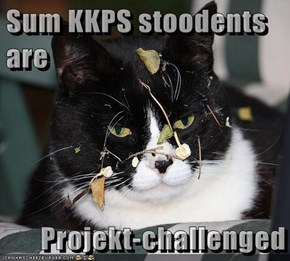 Sum KKPS stoodents are  Projekt-challenged