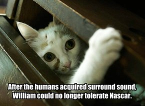 After the humans acquired surround sound, William could no longer tolerate Nascar.