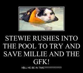 STEWIE RUSHES INTO THE POOL TO TRY AND SAVE MILLIE AND THE GFK!