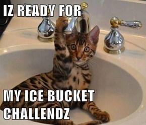 IZ READY FOR  MY ICE BUCKET CHALLENDZ