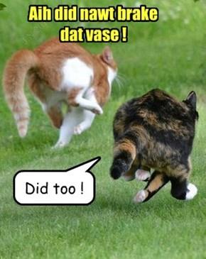 Aih did nawt brake dat vase !