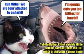 As Godfather Kitteh an' Shyster Millie walk by teh Pool on teh way to teh safety of teh Kamp Lounge, a huge shark rises out of teh pool an' shoves dem into teh waters!! Teh Godfather Kitteh is knocked unconscious!