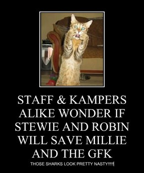 STAFF & KAMPERS ALIKE WONDER IF STEWIE AND ROBIN WILL SAVE MILLIE AND THE GFK