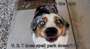 Yey!!! We're going to the park  V. E. T does spell park doesn't it?