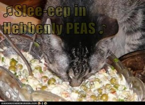 ♫Slee-eep in Hebbenly PEAS ♪