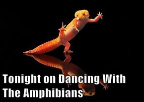 Tonight on Dancing With The Amphibians