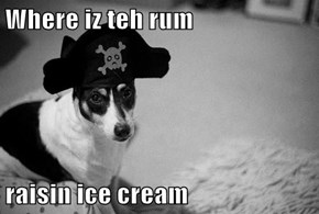 Where iz teh rum  raisin ice cream