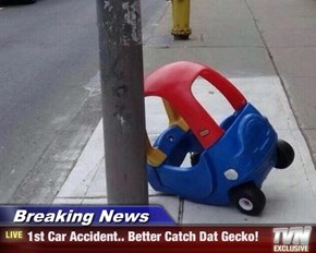 Breaking News - 1st Car Accident.. Better Catch Dat Gecko!
