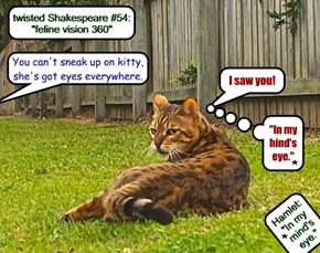 "twisted Shakespeare #54: ""feline vision 360"""