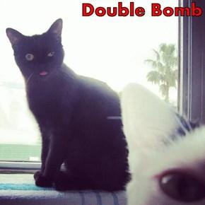 Double Bomb