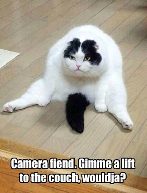Camera fiend. Gimme a lift to the couch, wouldja?