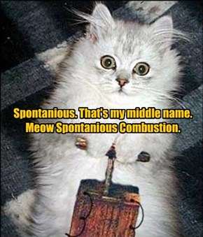 Spontanious. That's my middle name. Meow Spontanious Combustion.