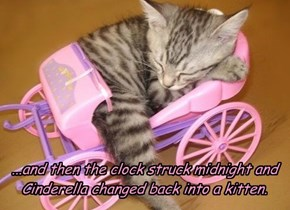 ...and then the clock struck midnight and Cinderella changed back into a kitten.