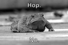 Hop.  No.