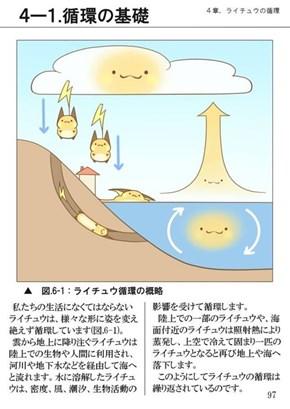 The Raichu Cycle