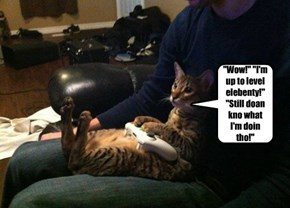 It's Online Gaming, They Don't Know You're A Cat