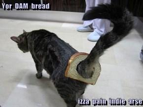Yor  DAM  bread  izza  pain  indie  arse