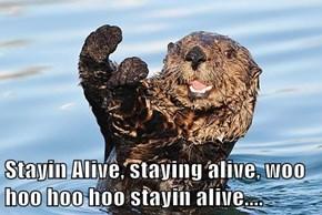 Stayin Alive, staying alive, woo hoo hoo hoo stayin alive....