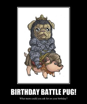 BIRTHDAY BATTLE PUG!