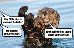He Has an Otter Opinion
