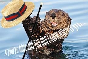 Otterin' on the Ritz