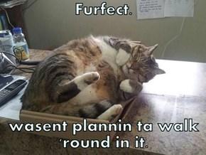 Furfect.   wasent plannin ta walk 'round in it.