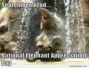 September 22nd....  National Elephant Appreciation Day