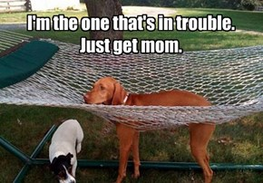 I'm the one that's in trouble. Just get mom.