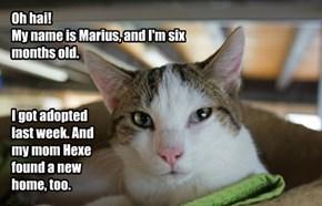 Marius Got Adopted!