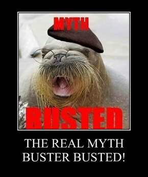 THE REAL MYTH BUSTER BUSTED!