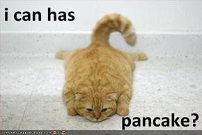 i can has  pancake?