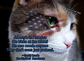 Johnny's in America No tricks at the wheel No one needs anyone They don't even just pretend.