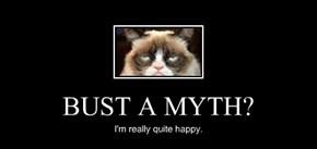 BUST A MYTH?